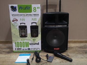 Bluetooth Karaoke Zvučnik Profit P-815/ 8 inča