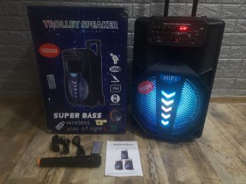 Zvucnik Bluetooth karaoke 12 inca + bezicni mikrofon