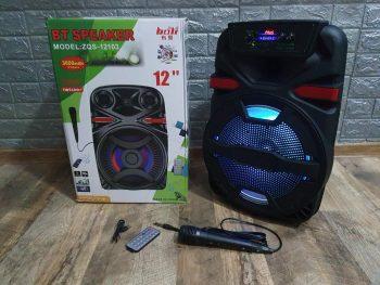 Bluetooth zvucnik veliki 12 inci ZQS-12105